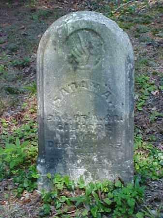 GEYER, SARAH A. - Meigs County, Ohio | SARAH A. GEYER - Ohio Gravestone Photos