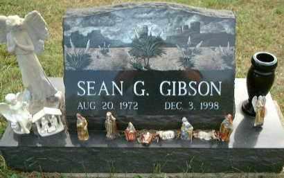 GIBSON, SEAN G. - Meigs County, Ohio | SEAN G. GIBSON - Ohio Gravestone Photos