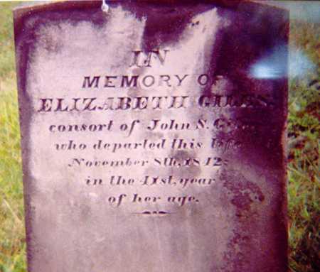 GILES, ELIZABETH - Meigs County, Ohio | ELIZABETH GILES - Ohio Gravestone Photos