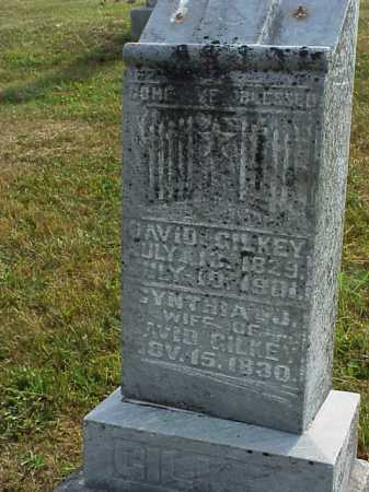 GILKEY, DAVID - Meigs County, Ohio | DAVID GILKEY - Ohio Gravestone Photos