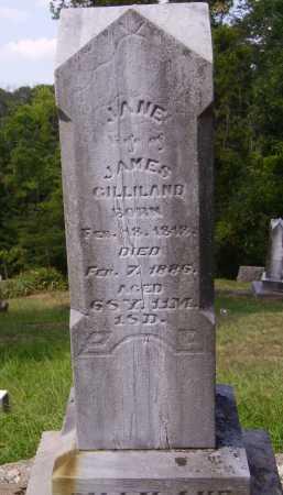 GILLIAND, JANE - Meigs County, Ohio | JANE GILLIAND - Ohio Gravestone Photos