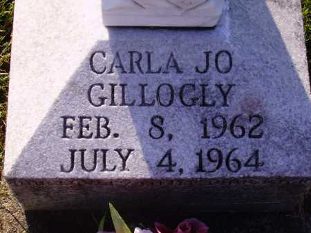 GILLOGLY, CARLA JO - Meigs County, Ohio | CARLA JO GILLOGLY - Ohio Gravestone Photos