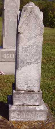 GODDARD, SARAH - OVERALL VIEW - Meigs County, Ohio | SARAH - OVERALL VIEW GODDARD - Ohio Gravestone Photos
