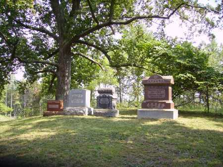 GOFF, CEMETERY - Meigs County, Ohio | CEMETERY GOFF - Ohio Gravestone Photos