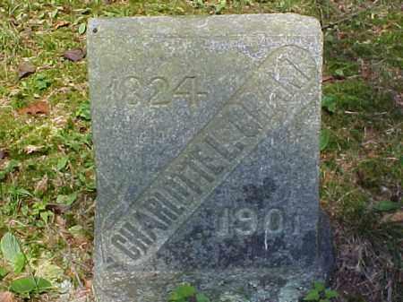 GRANT, CHARLOTTE L. - Meigs County, Ohio | CHARLOTTE L. GRANT - Ohio Gravestone Photos