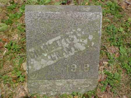 LYONS GRANT, CHARLOTTE - Meigs County, Ohio | CHARLOTTE LYONS GRANT - Ohio Gravestone Photos