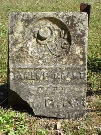 GRANT, JAMES F. - Meigs County, Ohio   JAMES F. GRANT - Ohio Gravestone Photos