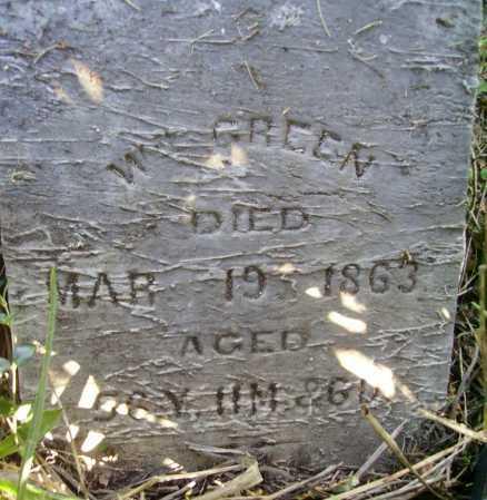 GREEN, WILLIAM - Meigs County, Ohio | WILLIAM GREEN - Ohio Gravestone Photos