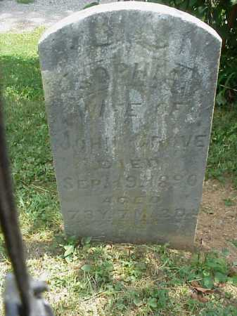 GROVES, SOPHIA - Meigs County, Ohio | SOPHIA GROVES - Ohio Gravestone Photos