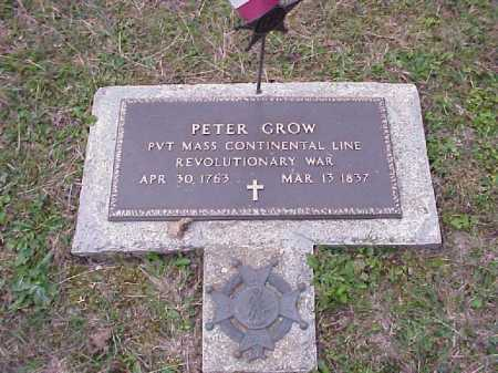 GROW, PETER - Meigs County, Ohio | PETER GROW - Ohio Gravestone Photos