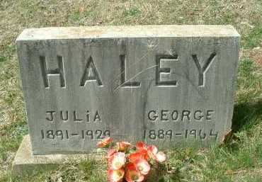 HALEY, GEORGE - Meigs County, Ohio | GEORGE HALEY - Ohio Gravestone Photos