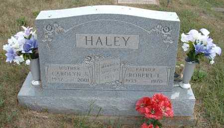 HALEY, ROBERT E. - Meigs County, Ohio | ROBERT E. HALEY - Ohio Gravestone Photos