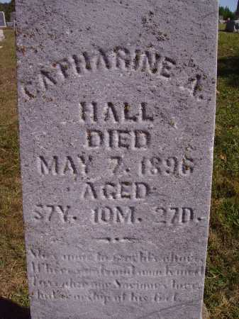 HALL, CATHARINE A. - Meigs County, Ohio | CATHARINE A. HALL - Ohio Gravestone Photos