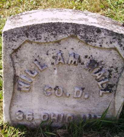 HALL, WILLIAM - Meigs County, Ohio | WILLIAM HALL - Ohio Gravestone Photos