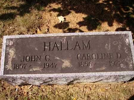 HALLAM, CAROLINE DORTHY - Meigs County, Ohio | CAROLINE DORTHY HALLAM - Ohio Gravestone Photos