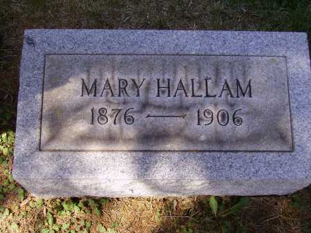 HALLAM, MARY - Meigs County, Ohio | MARY HALLAM - Ohio Gravestone Photos