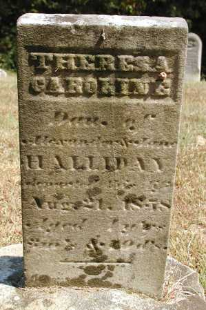 HALIDAY, THERESA CAROLINE - Meigs County, Ohio | THERESA CAROLINE HALIDAY - Ohio Gravestone Photos