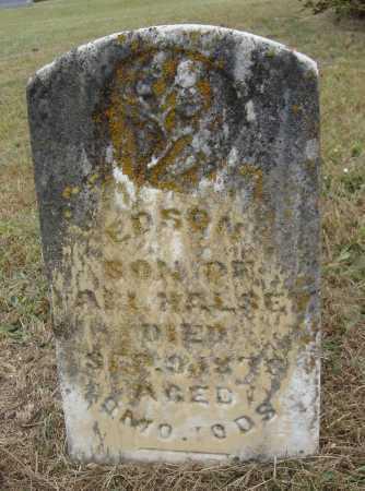HALSEY, EDSON - Meigs County, Ohio | EDSON HALSEY - Ohio Gravestone Photos