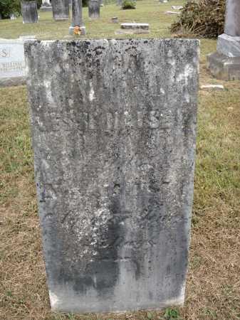 HALSEY, JESSE - Meigs County, Ohio | JESSE HALSEY - Ohio Gravestone Photos
