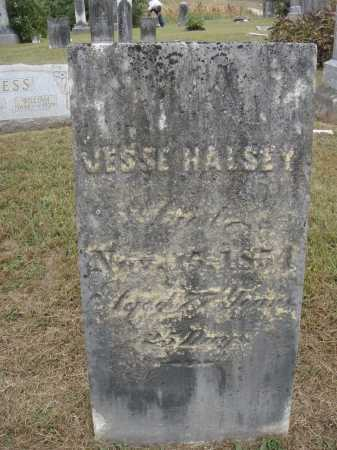 HALSEY, JESSE - CHALKED - Meigs County, Ohio | JESSE - CHALKED HALSEY - Ohio Gravestone Photos