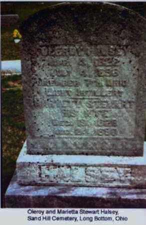 HALSEY, OLEROY - Meigs County, Ohio | OLEROY HALSEY - Ohio Gravestone Photos