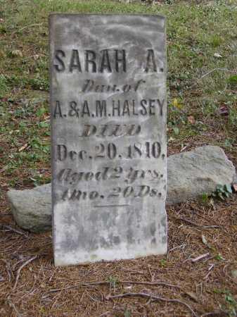 HALSEY, SARAH A. - Meigs County, Ohio | SARAH A. HALSEY - Ohio Gravestone Photos