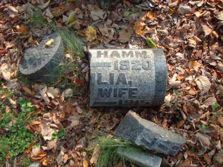 HAMM, JULIA - Meigs County, Ohio | JULIA HAMM - Ohio Gravestone Photos