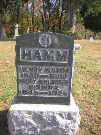 HAMM, HENRY - Meigs County, Ohio | HENRY HAMM - Ohio Gravestone Photos