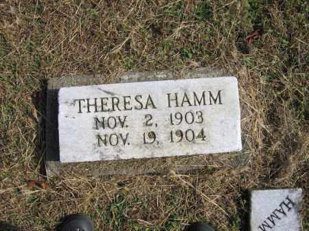 HAMM, THERESA - Meigs County, Ohio | THERESA HAMM - Ohio Gravestone Photos