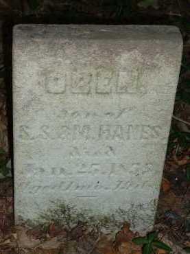 HANES, OREN - Meigs County, Ohio | OREN HANES - Ohio Gravestone Photos