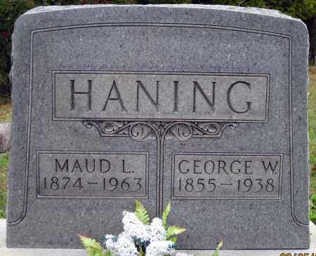 HANING, GEORGE W - Meigs County, Ohio | GEORGE W HANING - Ohio Gravestone Photos