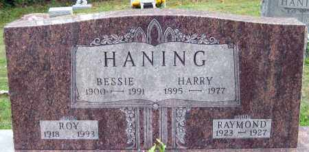 HANING, HARRY - Meigs County, Ohio | HARRY HANING - Ohio Gravestone Photos