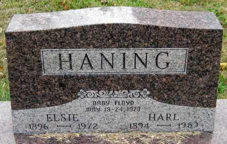 HANING, ELSIE - Meigs County, Ohio | ELSIE HANING - Ohio Gravestone Photos