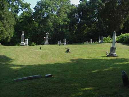 HANLIN, MINNA CORDELIA - Meigs County, Ohio | MINNA CORDELIA HANLIN - Ohio Gravestone Photos