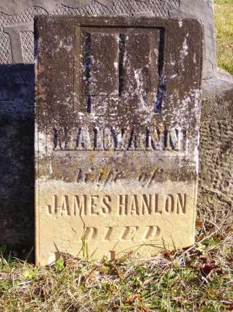 HANLON, MARYANN - Meigs County, Ohio   MARYANN HANLON - Ohio Gravestone Photos
