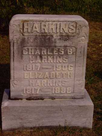 HARKINS, CHARLES B. - Meigs County, Ohio | CHARLES B. HARKINS - Ohio Gravestone Photos