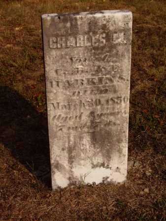 HARKINS, CHARLES M. - Meigs County, Ohio | CHARLES M. HARKINS - Ohio Gravestone Photos