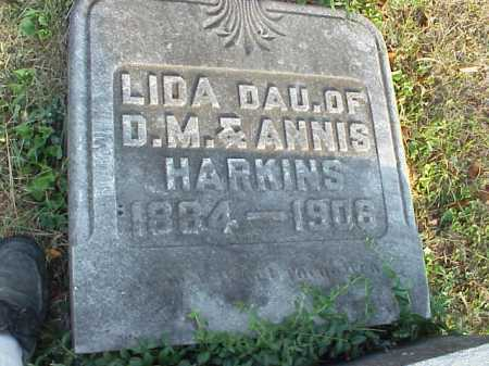 HARKINS, LIDA - Meigs County, Ohio | LIDA HARKINS - Ohio Gravestone Photos