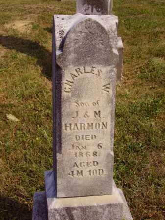 HARMON, CHARLES W. - Meigs County, Ohio | CHARLES W. HARMON - Ohio Gravestone Photos