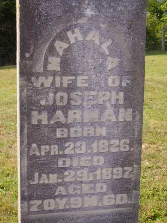 HARMAN, MAHALA - CLOSEVIEW - Meigs County, Ohio | MAHALA - CLOSEVIEW HARMAN - Ohio Gravestone Photos