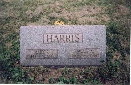 CONOLLY HARRIS, MARY - Meigs County, Ohio | MARY CONOLLY HARRIS - Ohio Gravestone Photos