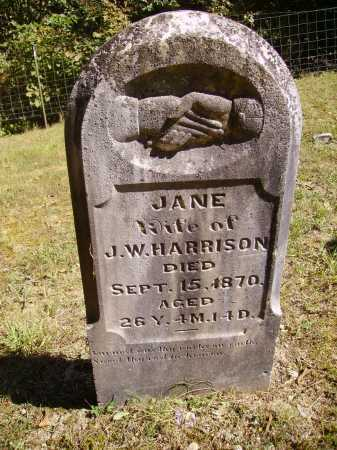HALLIDAY HARRISON, JANE - Meigs County, Ohio | JANE HALLIDAY HARRISON - Ohio Gravestone Photos