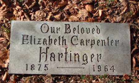 CARPENTER HARTINGER, ELIZABETH - Meigs County, Ohio | ELIZABETH CARPENTER HARTINGER - Ohio Gravestone Photos