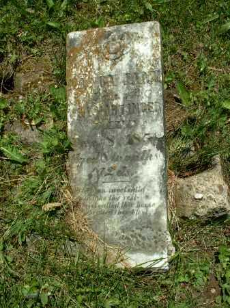 HARTINGER, NANCY JANE - Meigs County, Ohio | NANCY JANE HARTINGER - Ohio Gravestone Photos