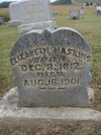 HASKINS, ELIZABETH - Meigs County, Ohio | ELIZABETH HASKINS - Ohio Gravestone Photos