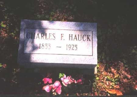 HAUCK, CHARLES F. - Meigs County, Ohio | CHARLES F. HAUCK - Ohio Gravestone Photos