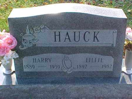 HAUCK, HARRY - Meigs County, Ohio | HARRY HAUCK - Ohio Gravestone Photos
