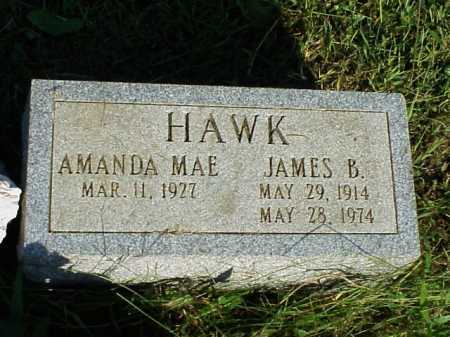 HAWK, JAMES B. - Meigs County, Ohio | JAMES B. HAWK - Ohio Gravestone Photos
