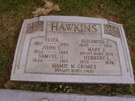 CARPENTER HAWKINS, ELIZA - Meigs County, Ohio | ELIZA CARPENTER HAWKINS - Ohio Gravestone Photos