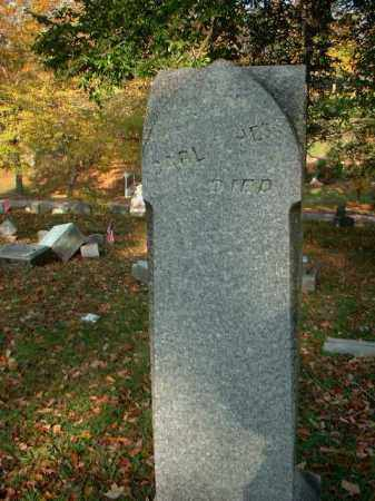 HESS, CARL P. - Meigs County, Ohio | CARL P. HESS - Ohio Gravestone Photos